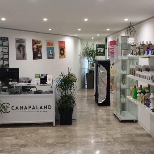 Canapaland Sanremo